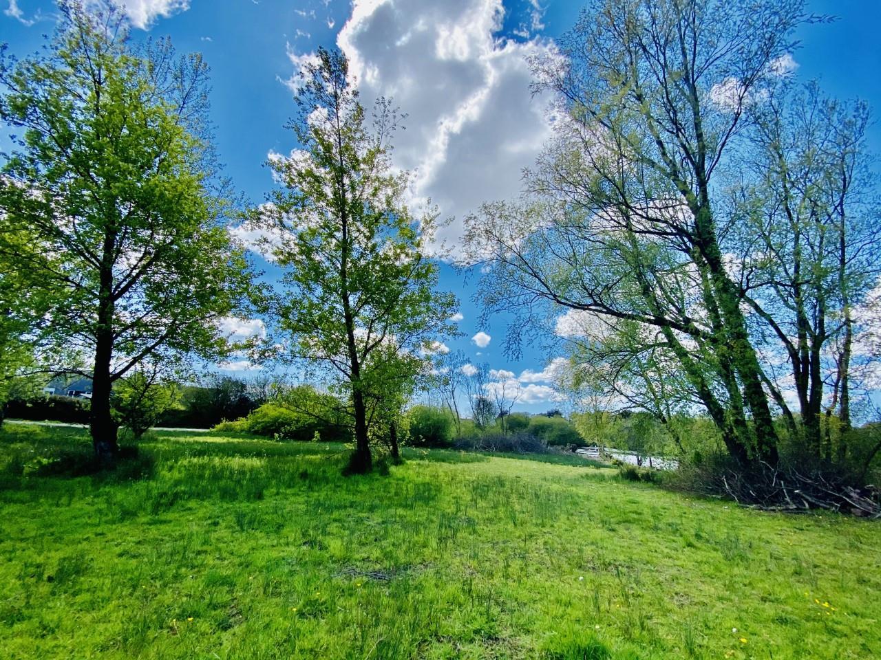 Edgemoor Drive, Upper Killay, Swansea, SA2 7HH